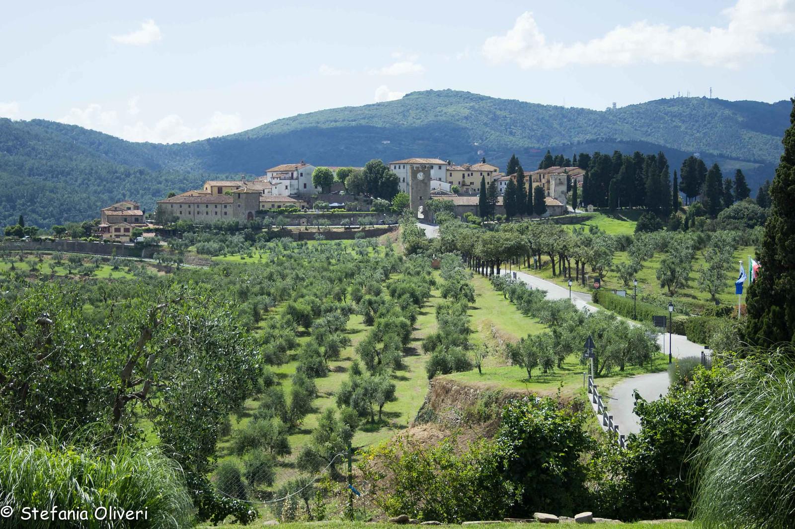 Prato Villa Artimino 4