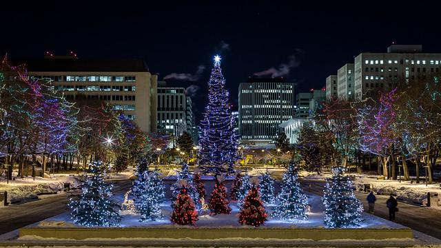 Christmas Lights Amidst City Lights