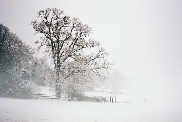 Landscape with Snow and Fog