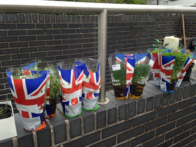 Herbs donated by Sainsbury's.