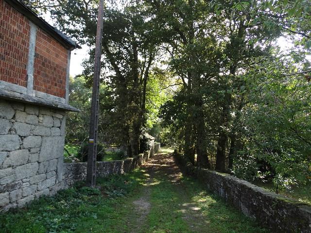 Camino en la PR-G 185 Ruta da Pedra de Díaz Castro