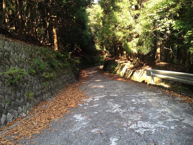 竜ヶ岳 旧国道421号