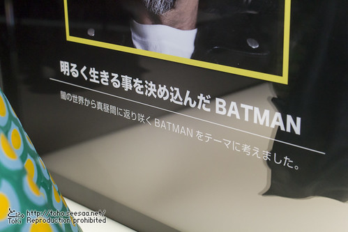 BATMAN100_HotToys_2-764