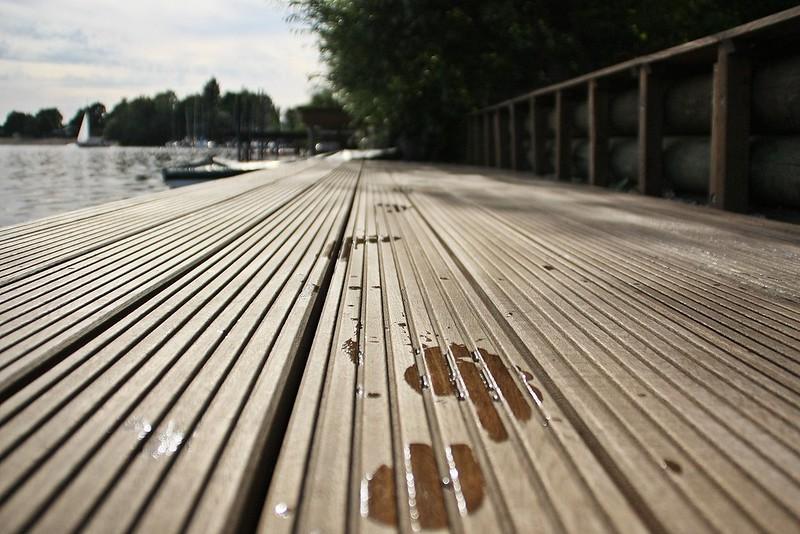 Goldengelchen Sommertag am See03