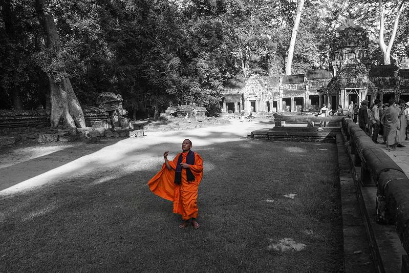 Ta Prohm 塔普倫廟 |Siem Reap 暹粒