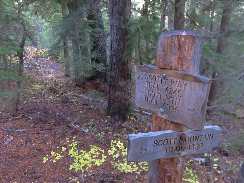 Scotty Way Trail junction with the Scott Mountain Trail