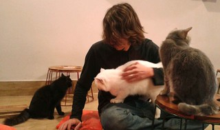 Kyle with Kitties