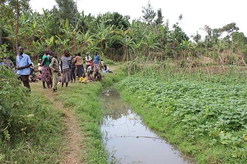 Uganda: Innovating irrigation solutions
