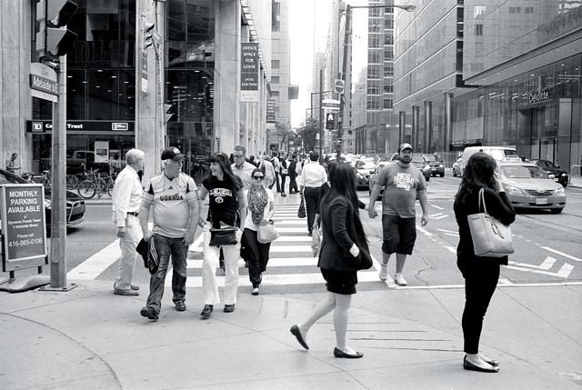 Crosswalk Chaos