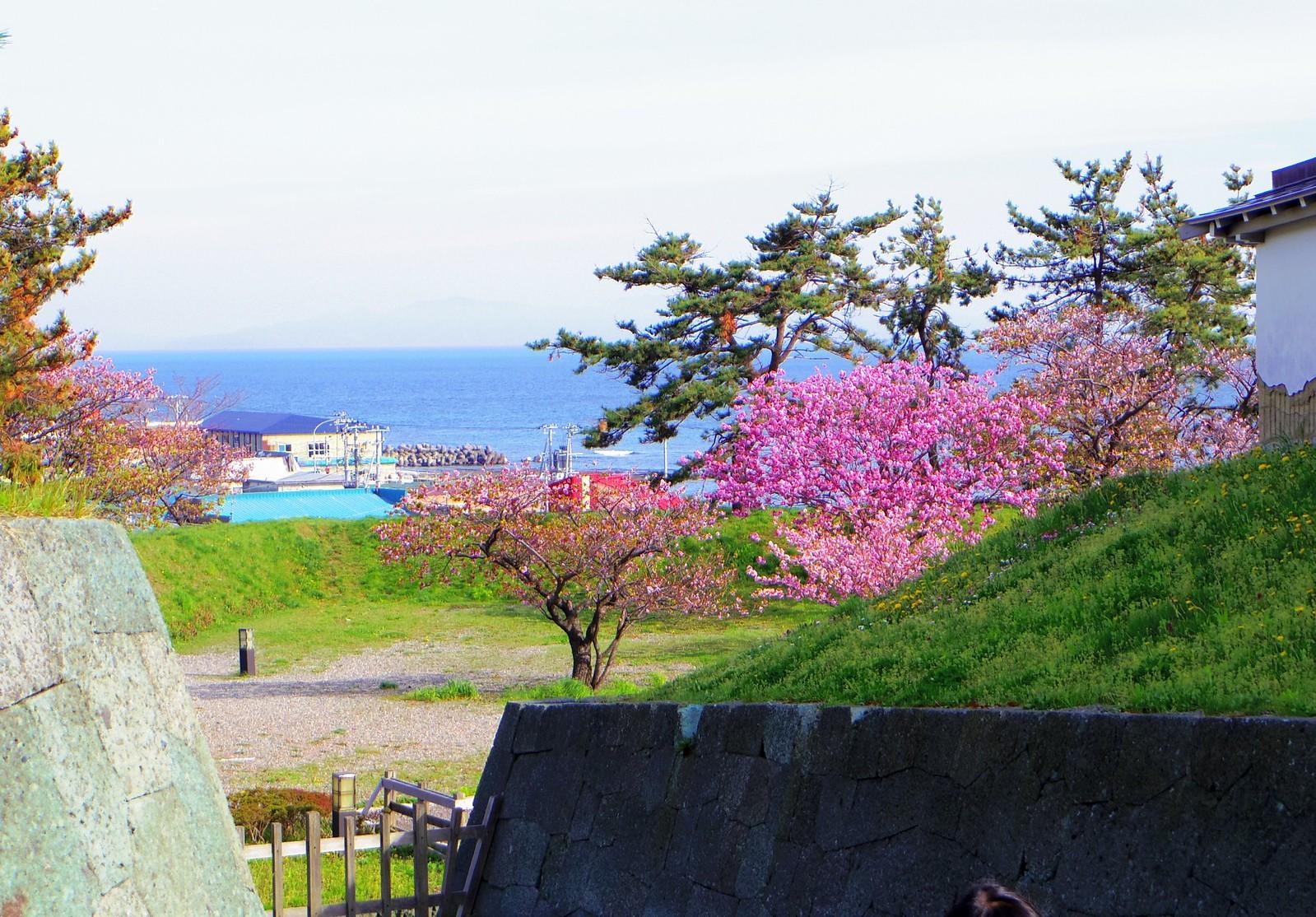 201605北海道道南自由行