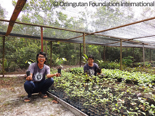 2016-05-26_Herbarium_Pak Bayu_Pak Harits_MHP_01_highres_wm