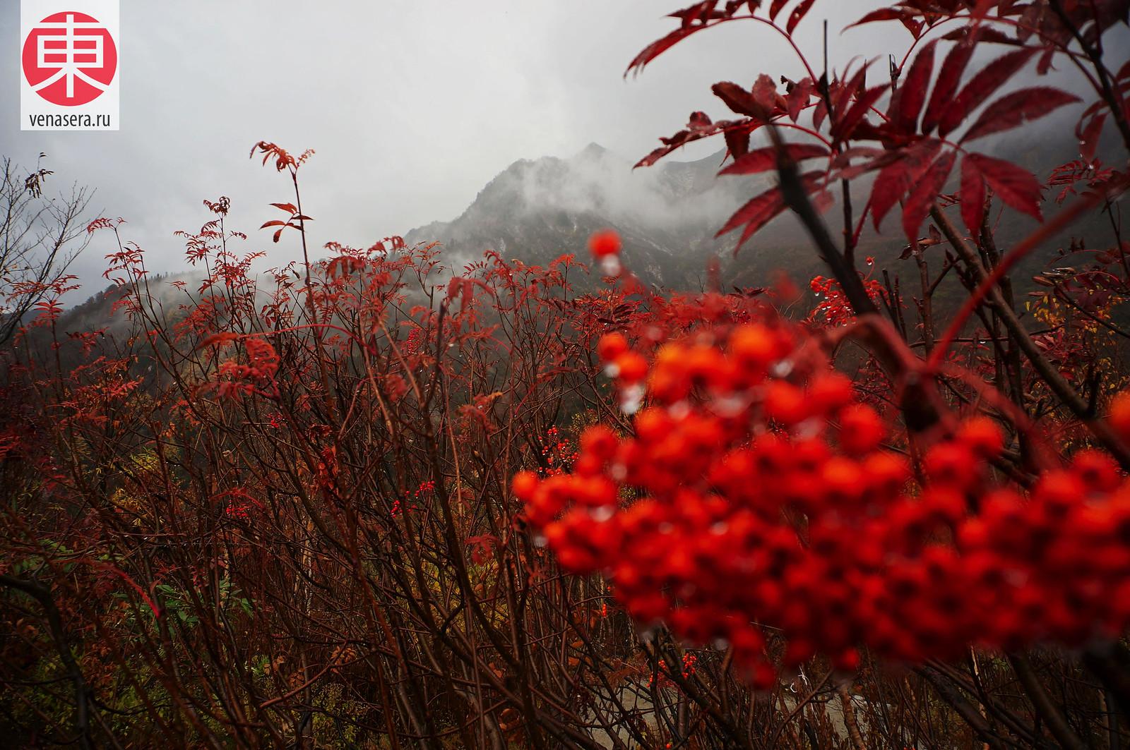 Куробэдайра (黒部平), Японские Альпы Татэяма Куробэ, Татэяма Куробэ, Tateyama Kurobe Alpine Route, 立山黒部, 立山黒部アルペンルート