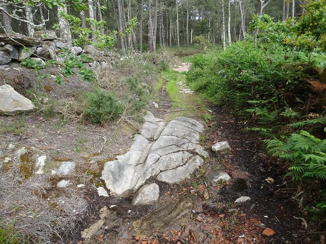 Camino en la Ruta de A Gafa e Portosín