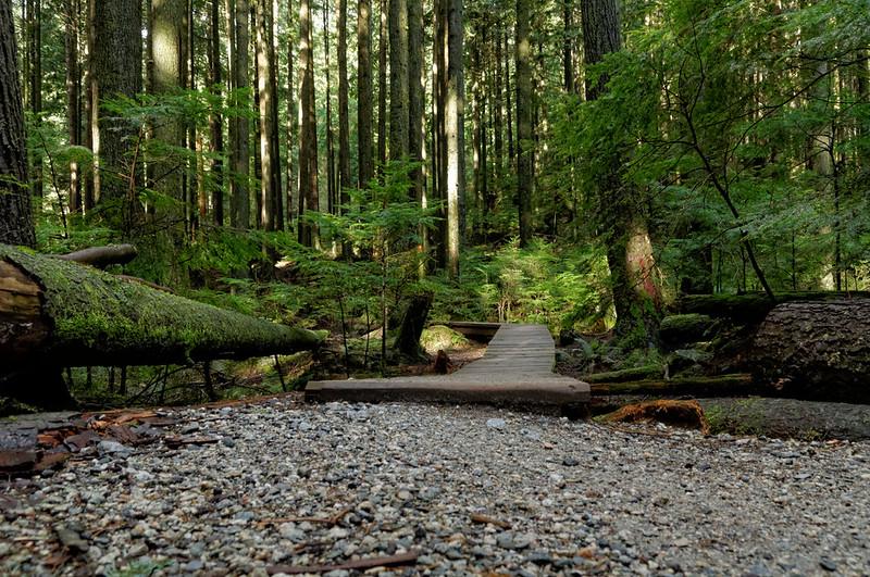 Baden-Powell Trail, 31 Mar 2015