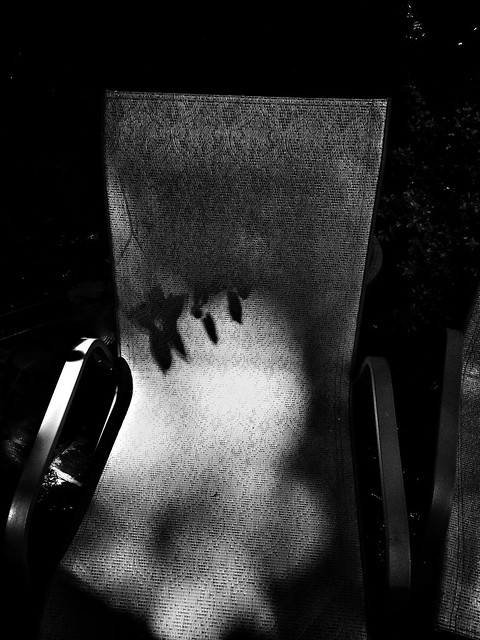 Lawn Chair & Shadow