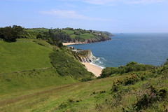 Landcombe - towards Blackpool Sands, Devon