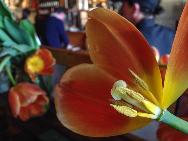 flowers at Folie Douce