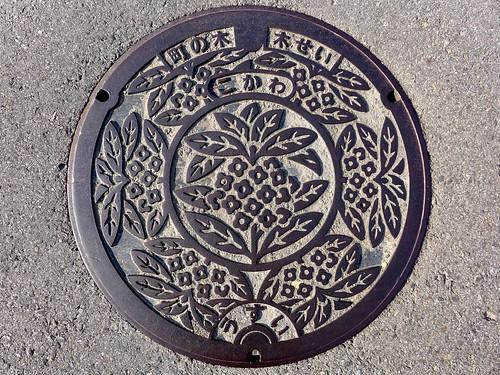 Kokawa Wakayama, manhole cover (和歌山県粉河町のマンホール)