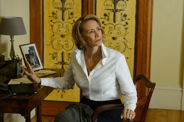 janet-mcteer-in-me-before-you-(2016)-large-picture
