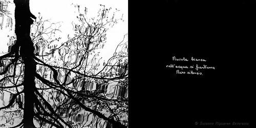 Calligrafie d'Anima (7)