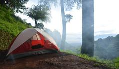 Tempat Wisata Bogor