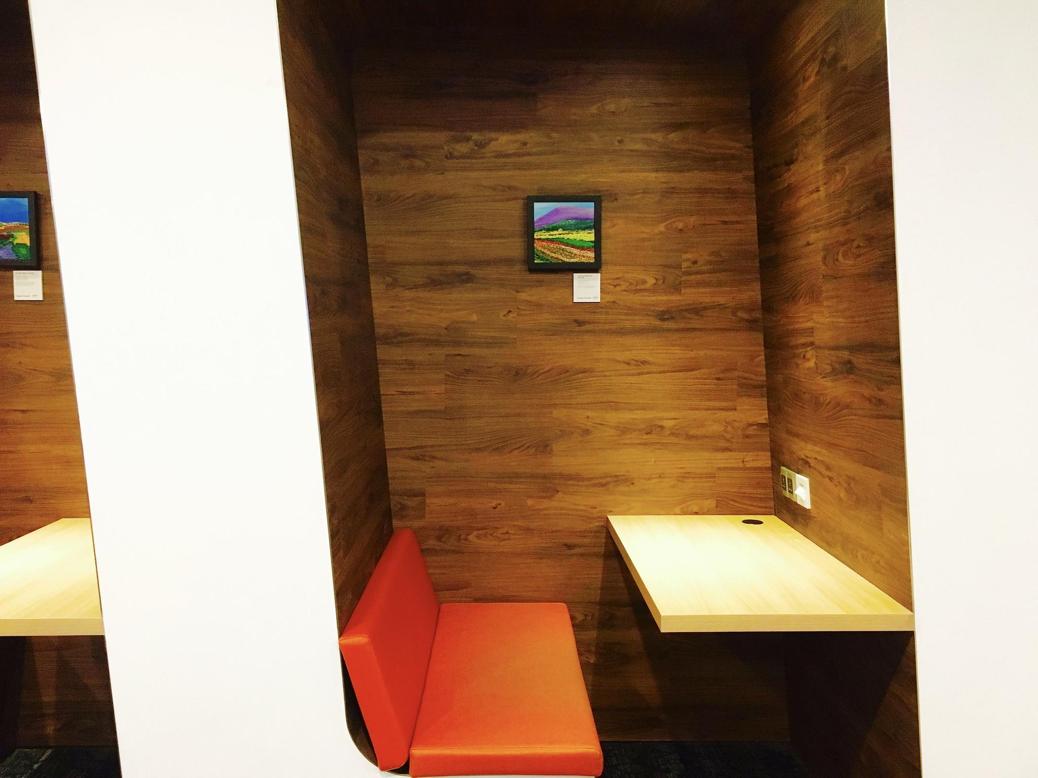 Singapore Changi Airport T1 SATS Premier Lounge