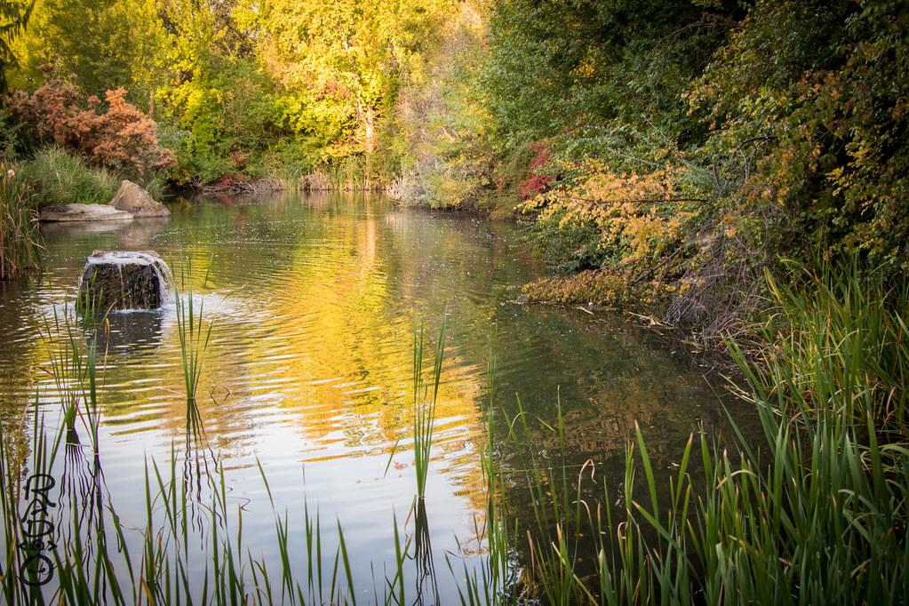 Kathryn Albertson Park: Last Day of Summer