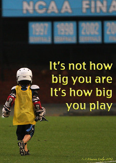 Play big - Lacrosse | by molingle