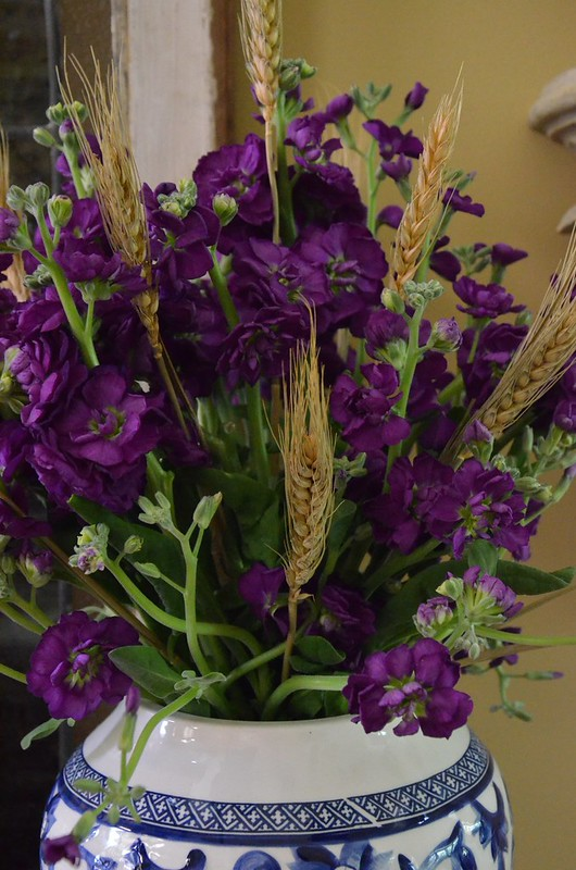 Purple stock flowers - Blue and White - Housepitality Designs