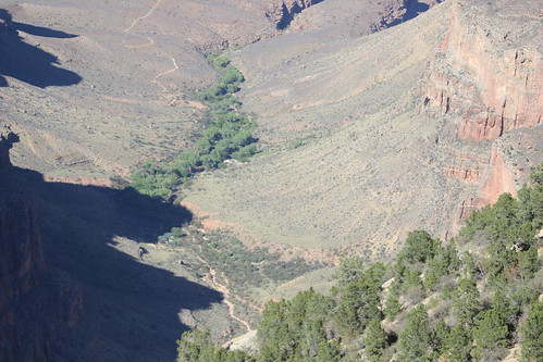 Grand Canyon South Rim T3I 090616 (7)