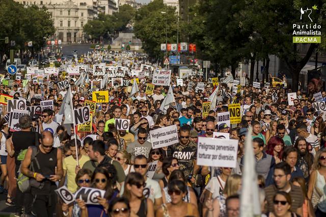 西班牙馬德里月前由「反對虐待動物黨」舉辦的抗議遊行活動,吸引了數千位民眾替鬥牛場上可憐的牛發聲! 取自PACMA