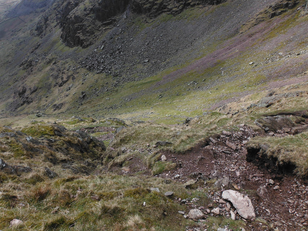 Climbing Redscrees 6