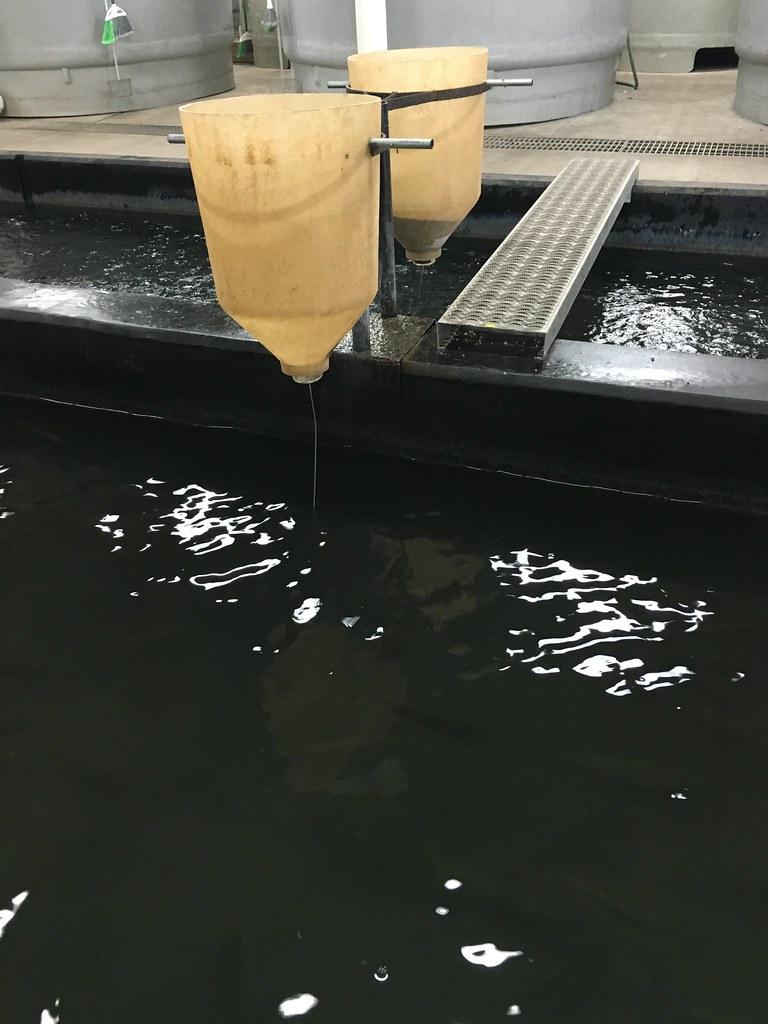 HPH-2016-North Dakota (Laura)
