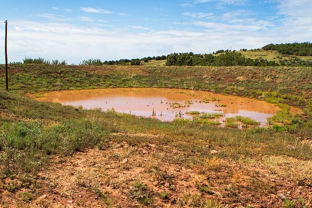Pond-33_7d1__010916