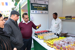 Green Haat 2013 | by UNDP in India