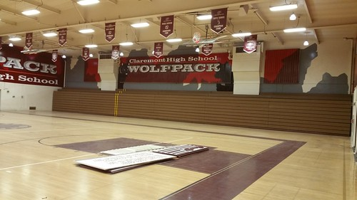 Claremont wall 3 - gym graphics