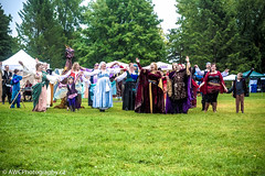 2016 Royal Medieval Faire