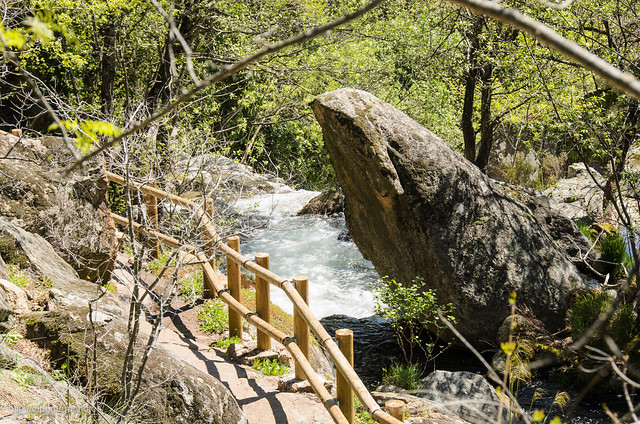 Valle del Jerte - Garganta de las Nogaledas