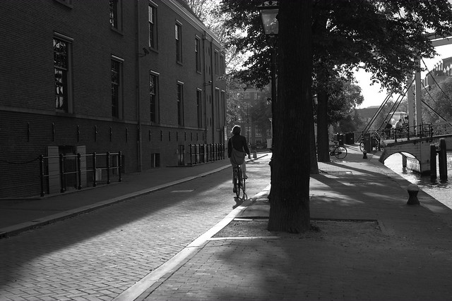 autumn light on Amsterdam 2