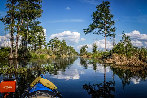 Lowcountry Unfiltered at Okefenokee-179