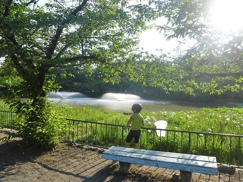 jp16-Nagoya-Château-Parc Meijon (8)