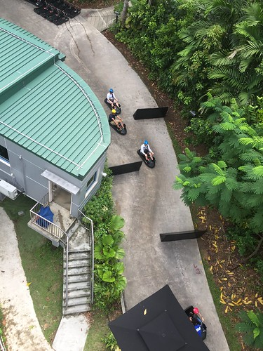 Singapore - Luge and forest adventure!