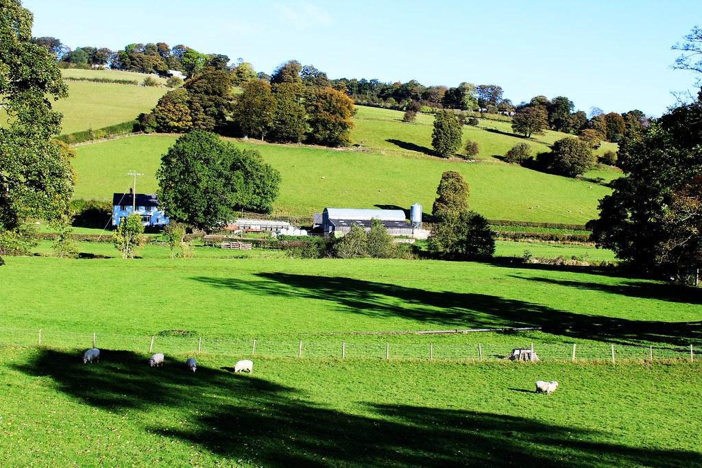 Farming landscape, Ceiriog Valley, Wales.