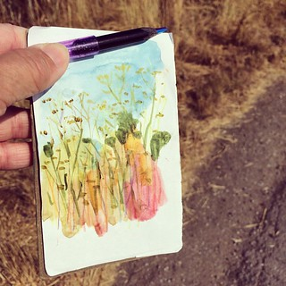 Quick sketch after the run #sketchbook #pocket #watercolor  #multicolorpencil #dailydrawing #grass #run #draw