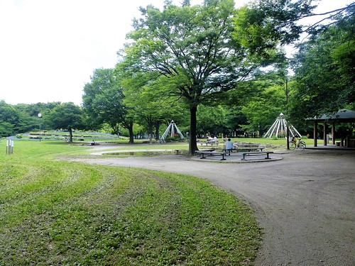 jp16-Nagoya-Château-Parc Meijon (4)