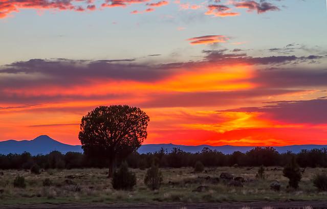 Sunset-1_7d1__270816