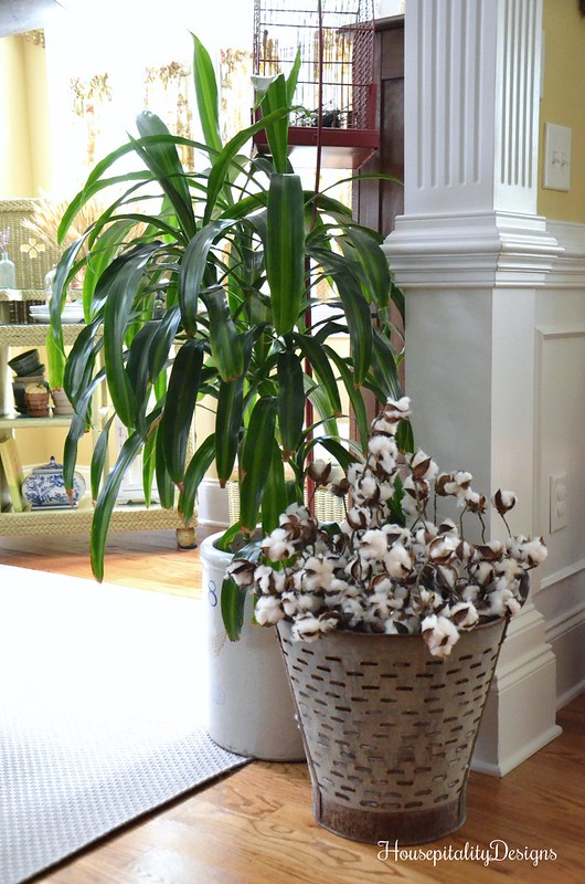 Cotton Stems - Olive Bucket - Housepitality Designs