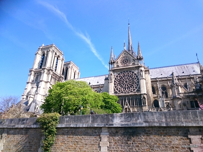 Back of Notre Dame Cathedral