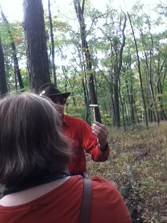 On the Saturday hike, October 6, Dr. Andy Smith stops to discuss a mushroom. | by nwclibrary