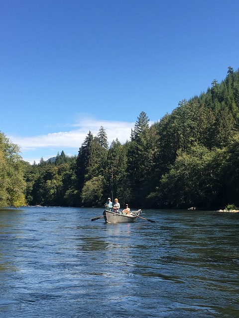 Mckenzie river fall 2016